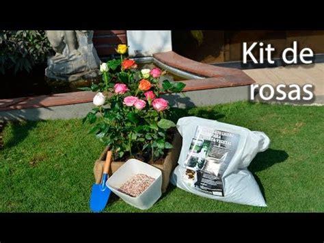 CÓmo Cultivar Bellas Rosas 66video Con Las Rosas Mas