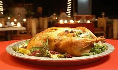 Thanksgiving Dinner Daiquiri Dick Cooking Restaurant Enjoy