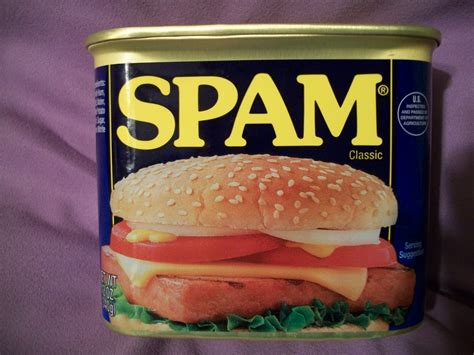 what is spam cats kids and crafts spam the food not computer mail