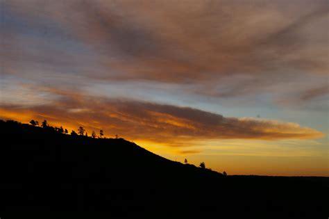 pin early morning sunrise single tree widescreen wallpaper