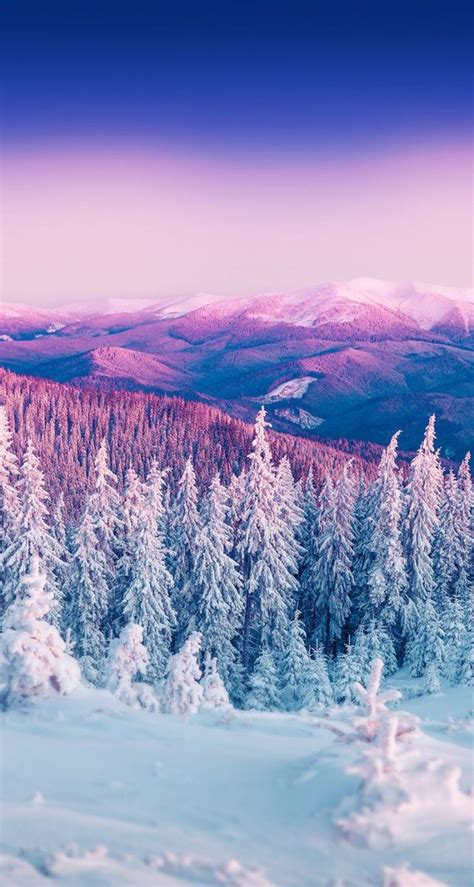 35 Winter Iphone Wallpapers To Spice Up Your Phone