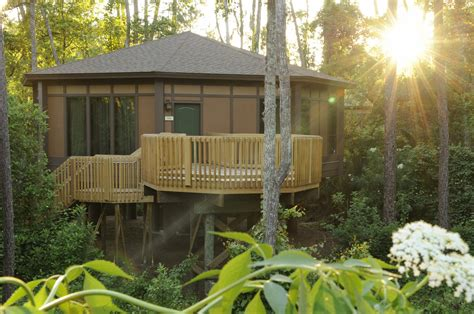 Tree House Villas @ Saratoga Springs Resort Magical