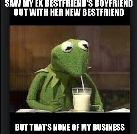 Funny Frog Meme - hilarious funny quotes humor kermit quotesgram
