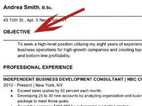 What Do You Put In The Objective Section Of A Resume by How To Write The Resume Business Insider