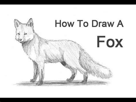 draw  fox red fox youtube