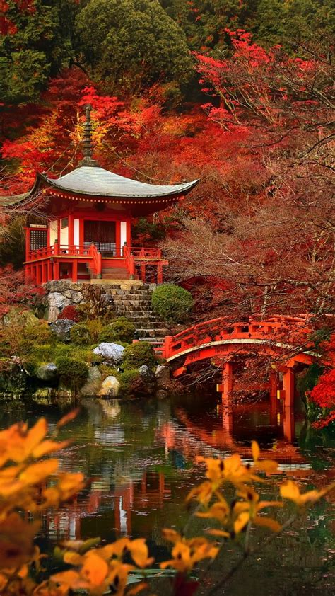 autumn  japan tap    beautiful nature