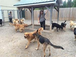 dog boarding in moncton nb long term boarding short With long term dog boarding