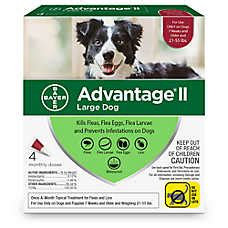 dog ticks   remove prevent petsmart