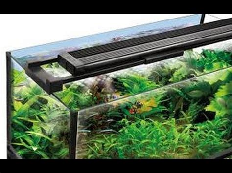 Fluval Aqualife & Plant Performance Led Lighting Youtube
