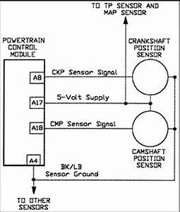 Schematics And Diagrams  How To Test Camshaft Position