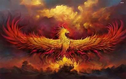 Phoenix Rising Backgrounds Above Wallpapers Warriors