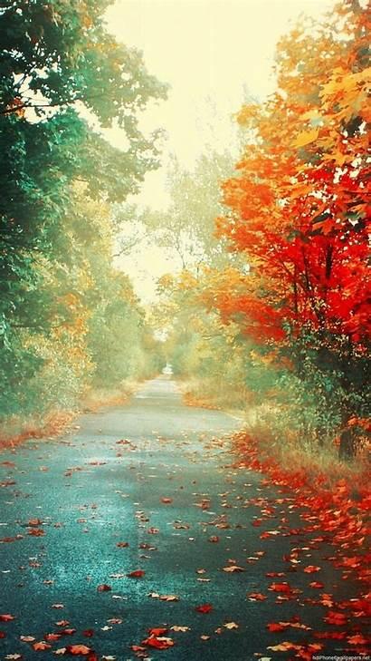 Vertical Wallpapers Fall 1080p Iphone Autumn Paisajes
