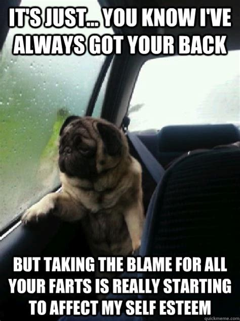 I Ve Got Your Back Meme - it s just you know i ve always got your back but taking the blame for all your farts is
