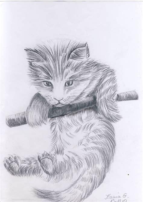 kaetchen katze akst zeichnungen tiere von   bei kunstnet