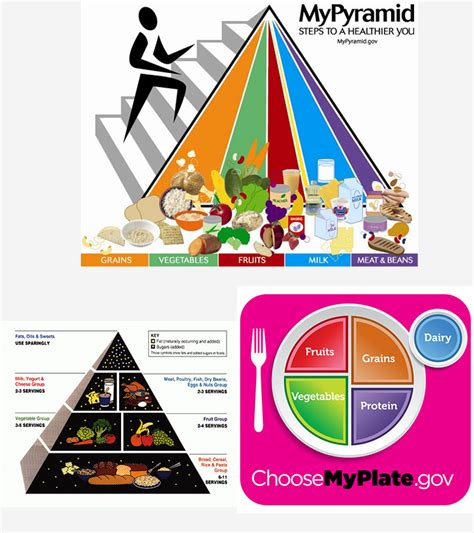 food pyramid for and 854 | Food Pyramid For Kids And Teens Your Guide To Nutrition