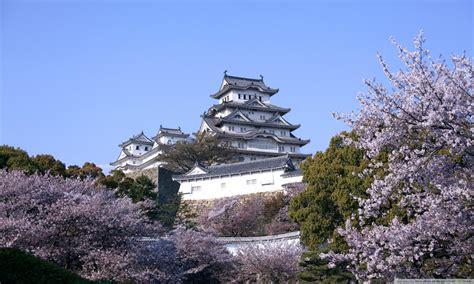 himeji castle  cherry blossoms  hd desktop wallpaper