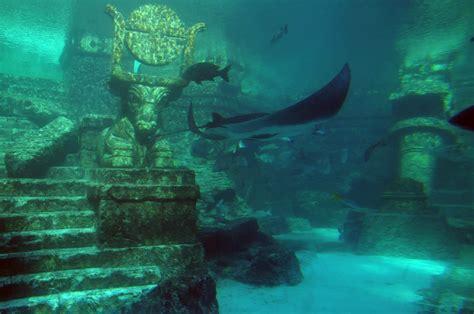 Filelower Level Aquarium Atlantis Hotel Nassau