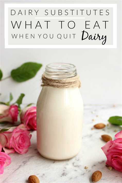 Dairy Substitutes What To Eat When You Quit Dairy