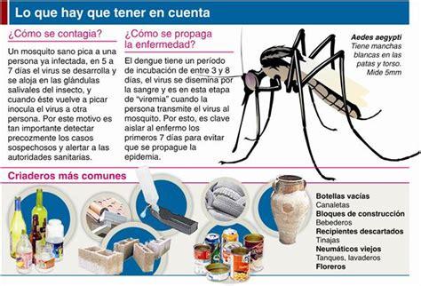 Información Sobre El Dengue Informaciondeinfo