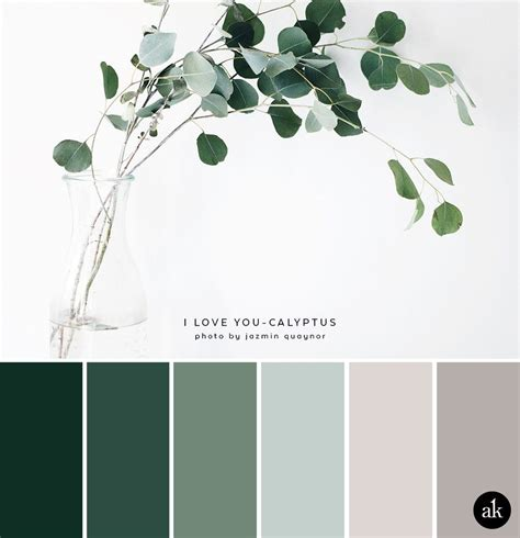 a eucalyptus inspired color palette blue green color