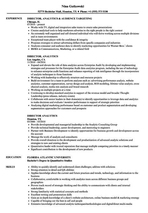 Resume For Analytics by Director Analytics Resume Sles Velvet
