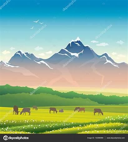 Mountain Grass Landscape Cow Depositphotos Natuska