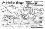 Coloring Stream Water Pages Sheets Colouring Drawing Watershed Healthy Sheet Streamkeepers Sream Placemat Program Placemats 11x17 Drawings Getdrawings 350px 93kb sketch template