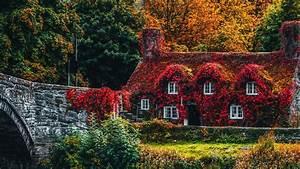 Download, Wallpaper, 1366x768, House, Autumn, River, Foliage, Autumn, Colors, Tablet, Laptop, Hd