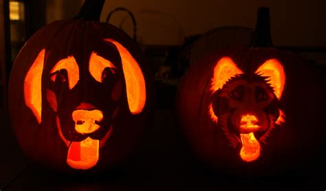 cool and easy pumpkin carvings patterns pumpkin carving sparkaliciouswit