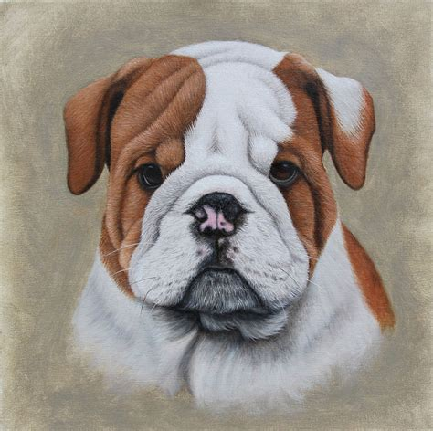 Dog Portraits In Oil Thoroughbredfineart