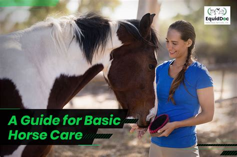 horse care equine veterinary guide healthy happy services essential keep apr comments