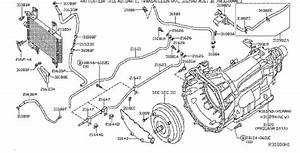 Nissan 200sx Clip Hose  Clip Wiring Harness  Vac  Fora