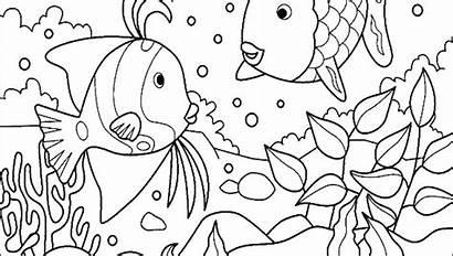 Coloring Ocean Pages Aquarium Ecosystem Fish Tank
