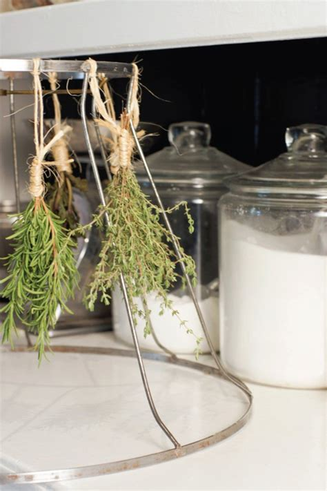 Dried Herbs Projects DIY Projects Craft Ideas & How To?s