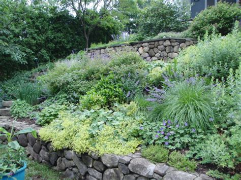 how to landscape a slope landscaping landscaping ideas for steep slopes