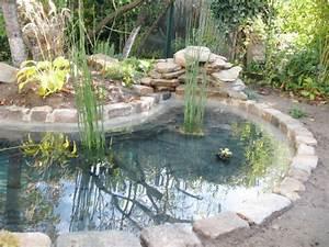 Avant apres un bassin pour redonner vie a un jardin for Amenager jardin en pente 8 comment fabriquer un poulailler en bois pour le jardin