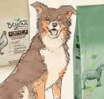 meilleures croquettes chien sans glucides