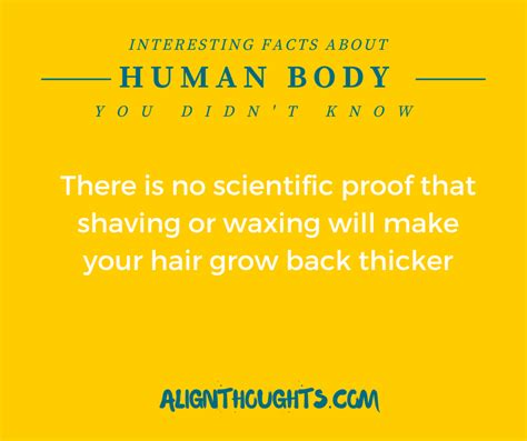 Incredible Human Body Facts You Must Know Alignthoughts
