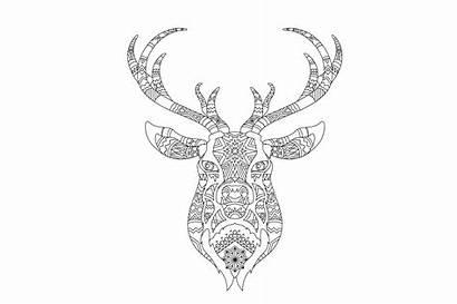 Reindeer Head Pattern Coloring Intricate Vector Clipart
