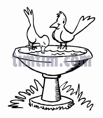 Drawing Birdbath Birds Bird Fountain Bath Water