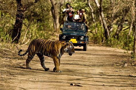 corbett jim park national uttarakhand places visit tiger bengal tigers source