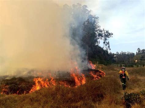 Controlan Incendio Que Consumió 650 Hectáreas Al Sur De