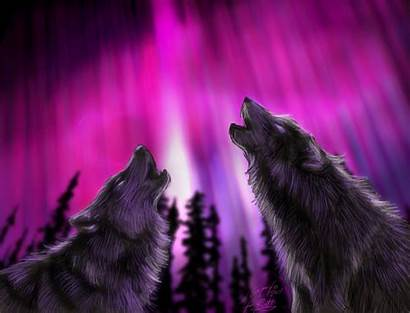 Howling Wolf Wolves Northern Lights Ruth Wallpapersafari