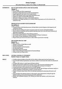 erp developer resume samples velvet jobs With erp documentation sample