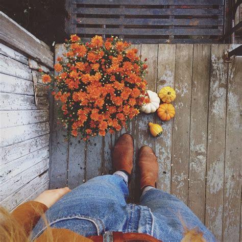 fall vibes indie orange aesthetics grunge tumblr