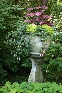 Shade Container Garden Plants