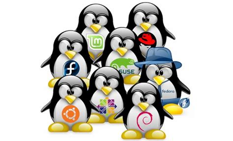 how to become a social media manager the problem with linux packaging in large organizations