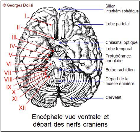 biotop terminologie medicale lexique medical