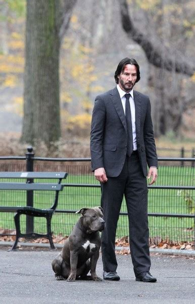 keanu reeves     set  john wick