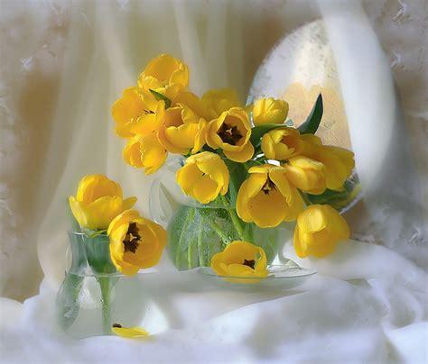 gifyanimacjaobrazki png kwiaty wiosna